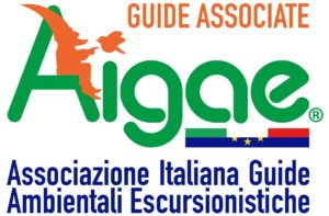 Le competenze del Team Asiago Guide